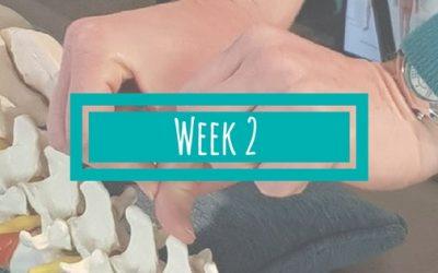 Week 2 van de BSR Academy