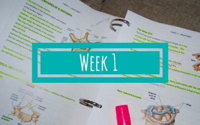 Week 1 van de BSR Academy