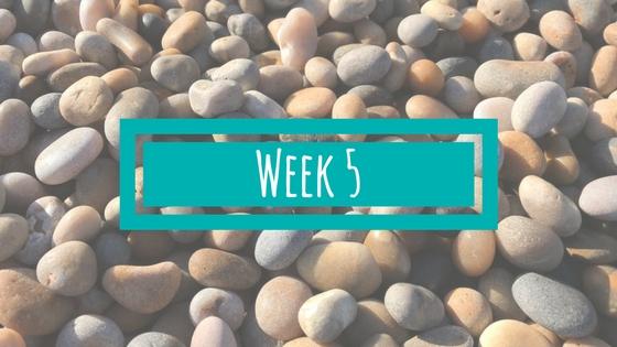 Week 5 van de BSR Academy