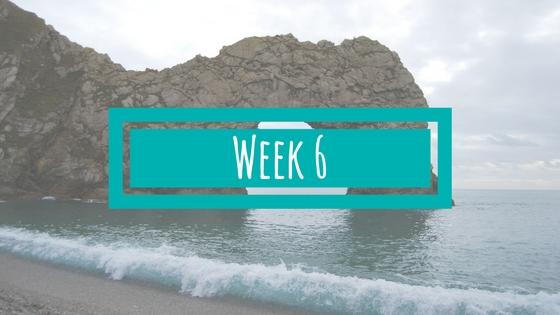 Week 6 van de BSR Academy