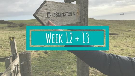 Week 12 en 13 BSR Academy