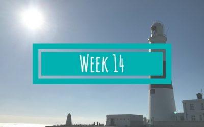Week 14: Examens